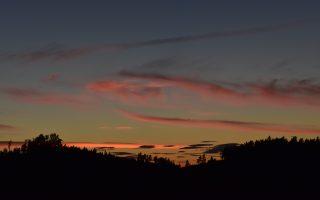 Sonnenuntergang über dem Wald. Die Bäume sind nur schwarze Umrisse, während der Himmel blau und orange ist und von rot beleuchteten Wolkenschleiern durchzogen ist.