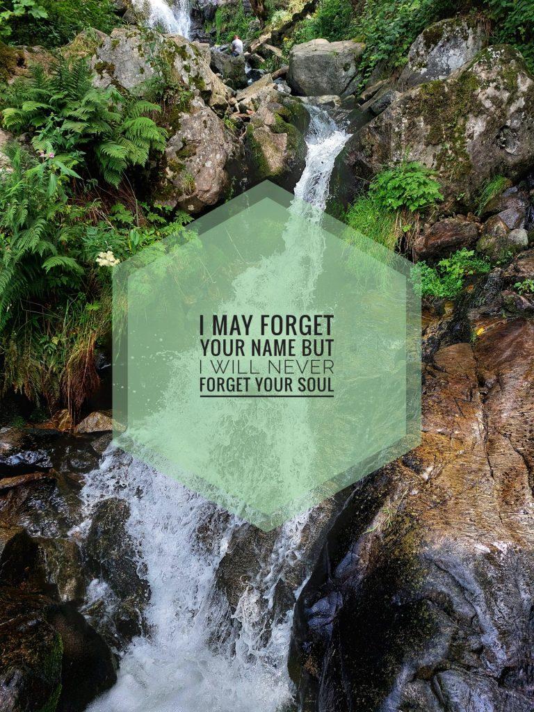Man sieht ein Rinnsal aus einem Wasserfall, das sich seinen Weg zwischen Felsen und verschiedenen Grünpflanzen bahnt. Im Vordergrund steht ein leicht durchscheinendes Sechseck, auf dem steht: I may forget your name but I will never forget your soul